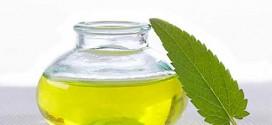 Terapêuticas naturais para acabar com a ejaculação precoce